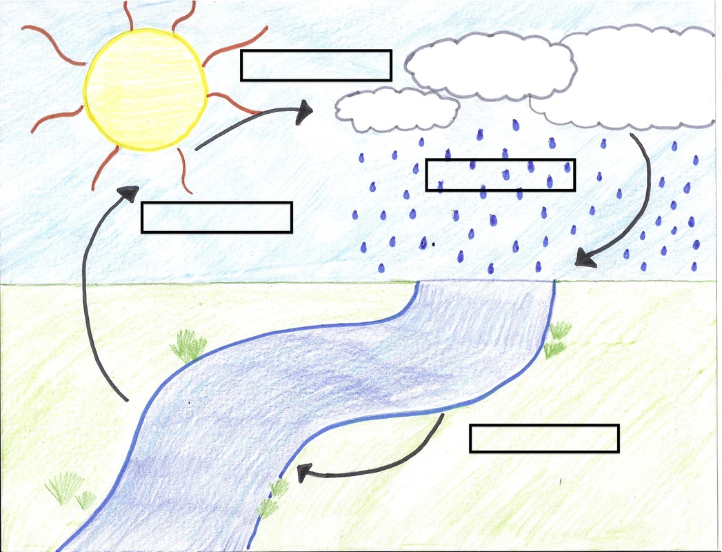 blank diagram - water cycle